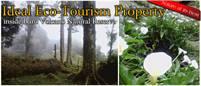 Barú National Forest Park Titled Property above Boquete