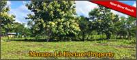 Macano Panama Property for Sale on Key Paved Road Near Boquete