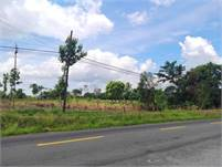 1.5 Hectares of Land Right on the Main Road to Volcan