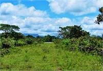 Next to Los Molinos View Lot for Sale