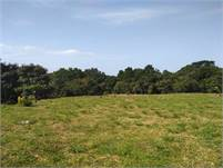 River Ranch, Panama 5 Acre Plus Lot for Sale with River Frontage & Three Wells Near Boquete