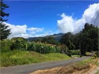 Lot for Sale in a Very Pretty Area of Volcancito, Boquete, Panama