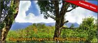 Magnificent Coffee Farm Property in Prime Volcancito, Boquete – Magnifica Finca de Café en Volcancit