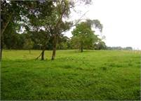 Potrerillos Panama Property for Sale