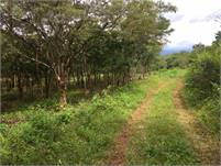 Mountain View Lot for Sale in Jaramillo, Boquete, Panama – Nearly 1/2 Acre