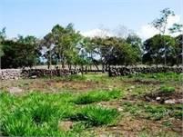 Over 13 acres of flat land in Potrerillos Panama