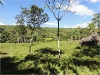 Caldera Boquete development property – Price reduction