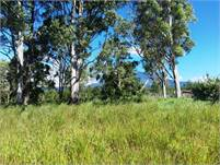 Great Flat Lot for a New House in Boquete, Panama – 3/4 Acres on Paved Road