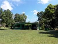 Small Farm w/House for Sale in Sortova, Bugaba, Chiriqui w/Well, Fruit Trees, Galera & extra house