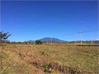 Lot for Sale On Paved Road in Quebrada Las Tortugas Near Cruce de Caldera