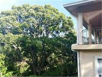 Rare Close to Downtown Boquete House for Sale on Nearly an Acre of Land with Views