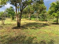 A House Plus 5 Hectares of Relatively Flat Land in Boqueron, Chiriqui, Panama