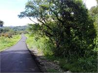 Large Riverfront Property for Sale Close to Downtown Boquete, Panama –Two Parcels at One Total Price