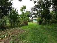 10 Hectares Plus a Simple House in Potrerillos, Chiriqui, Panama