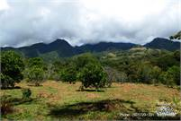 Price Reduction: Volcancito Highlands 2 Acre Building Site