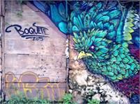Boquete Art