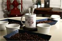 Finca Lerida Coffee Tour