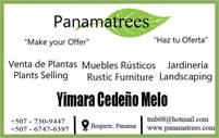 PanamaTrees Plants, Landscape Design and Custom Furniture