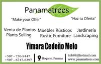 PanamaTrees Plants, Landscape Design and Custom Furniture