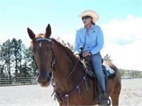 Boquete Equestrian Club