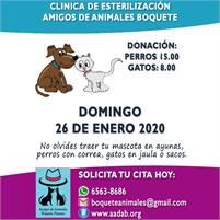 Amigos de Animales Spay Neuter Clinic
