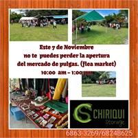 Flea Market at Chiriqui Storage