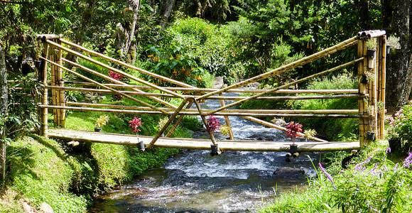 A Boquete Bridge